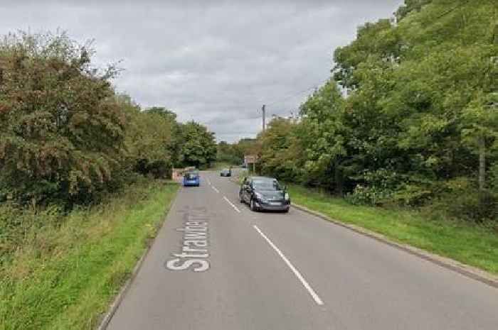RSPCA appeal after body of pregnant dog found beside road