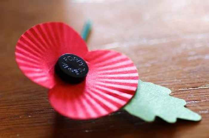 Legion to 'stop selling poppies in the EU due to Brexit'