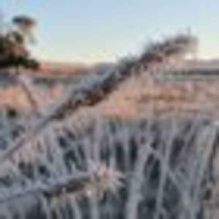 Weather: Canterbury and parts of Otago wake to frost, colder mornings expected