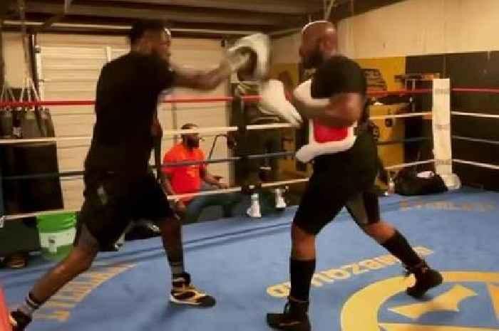 Wilder training footage shows ferocious intensity after Fury fight postponement
