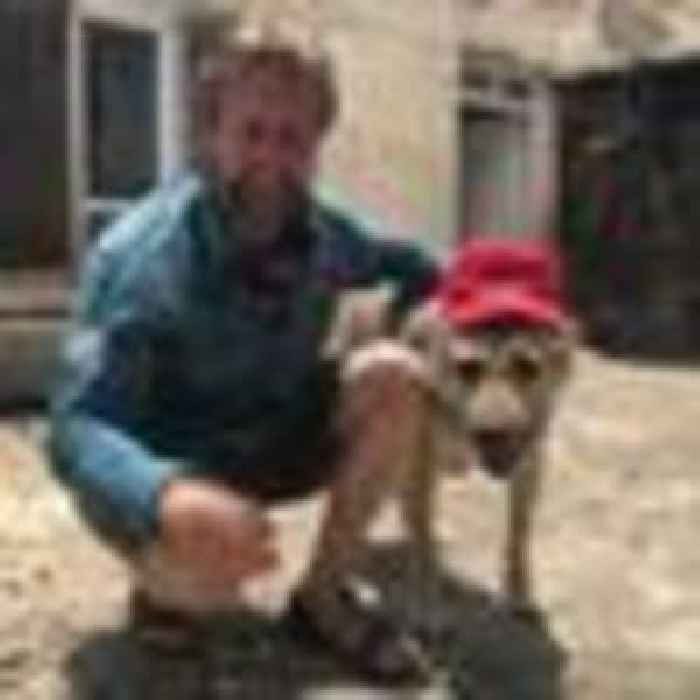 Charter plane arrives in Kabul to collect Pen Farthing and his animals