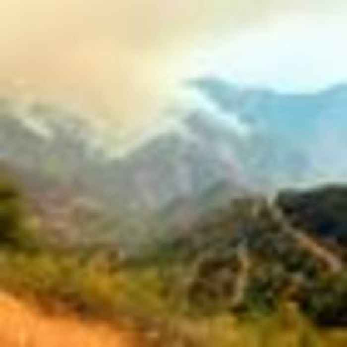 Wildfire threatens famous California sequoia forest