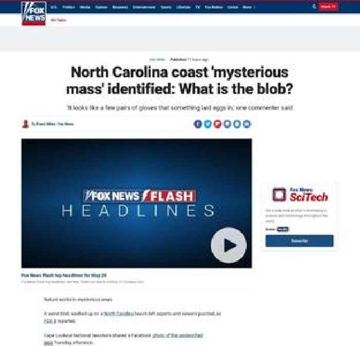 North Carolina coast 'mysterious mass' identified: What is the blob?