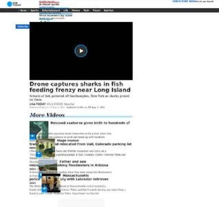 Drone captures sharks in fish feeding frenzy near Long Island