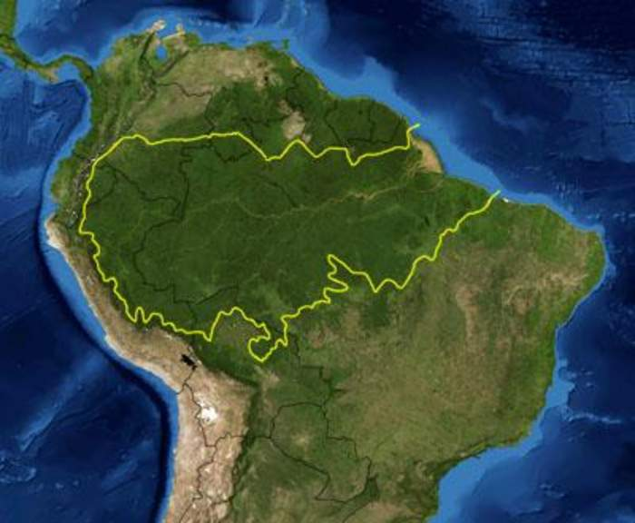 Pope, closing synod, decries plundering of the Amazon