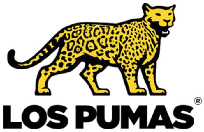 News24.com | Los Pumas name big-hitters Matera, Isa, Sanchez in their team to face Springboks