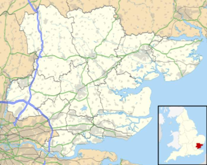 Surge testing in Brentwood area of Essex after one case of South Africa variant found
