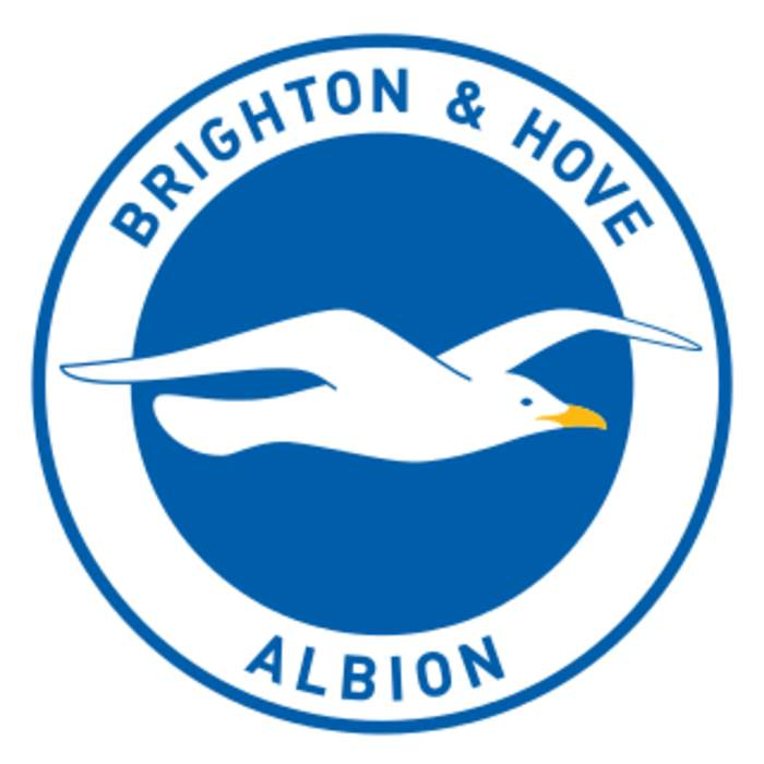 Brighton & Hove Albion 0-1 Crystal Palace: Jordan Ayew goal clinches victory for Eagles