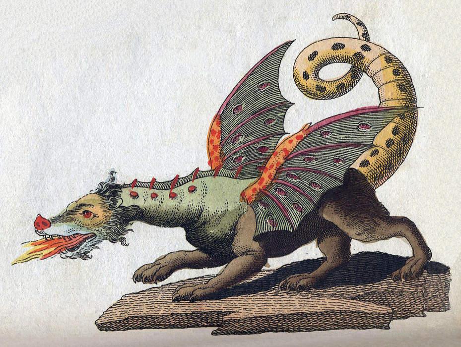 The six reasons the Dragons don't want Matt Dufty