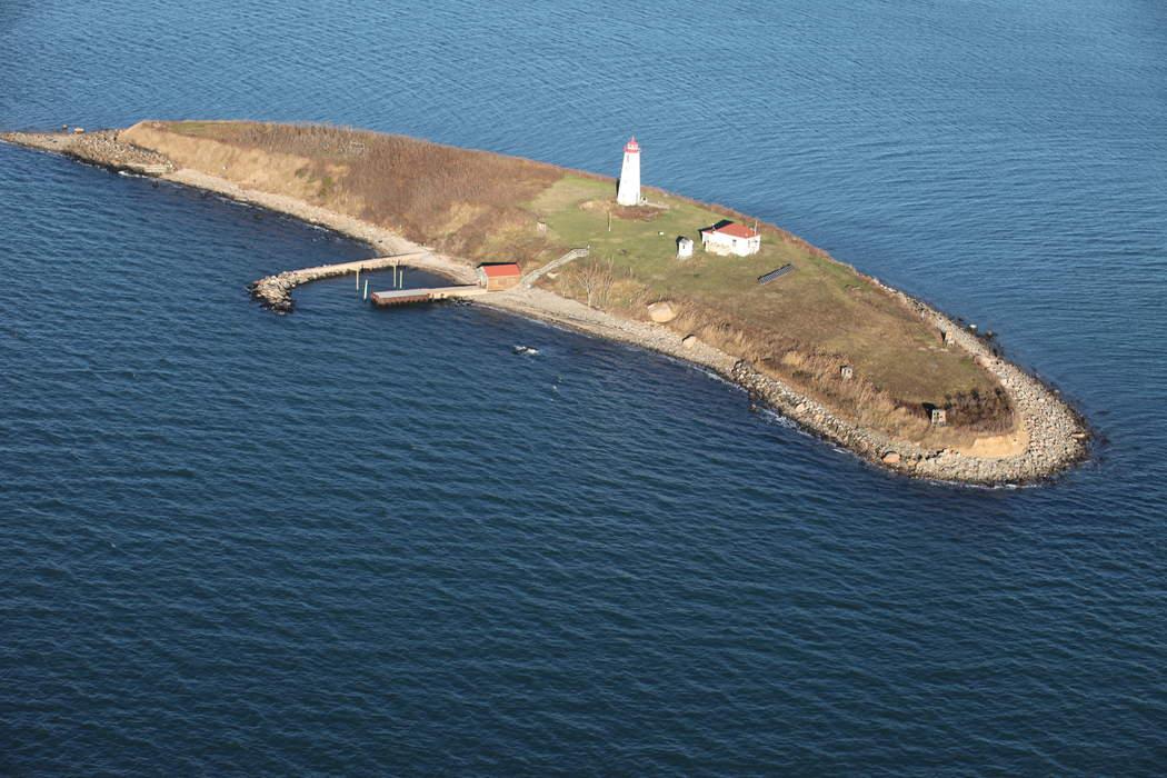 Nature: Connecticut's Falkner Island