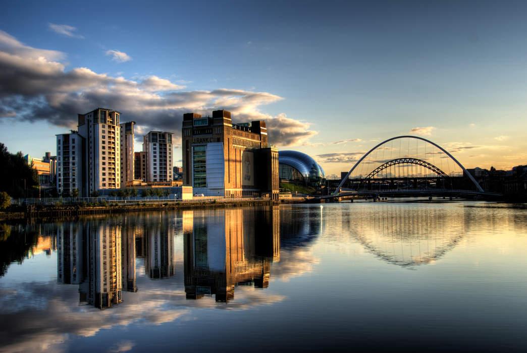Newcastle-Gateshead kittiwakes at record high