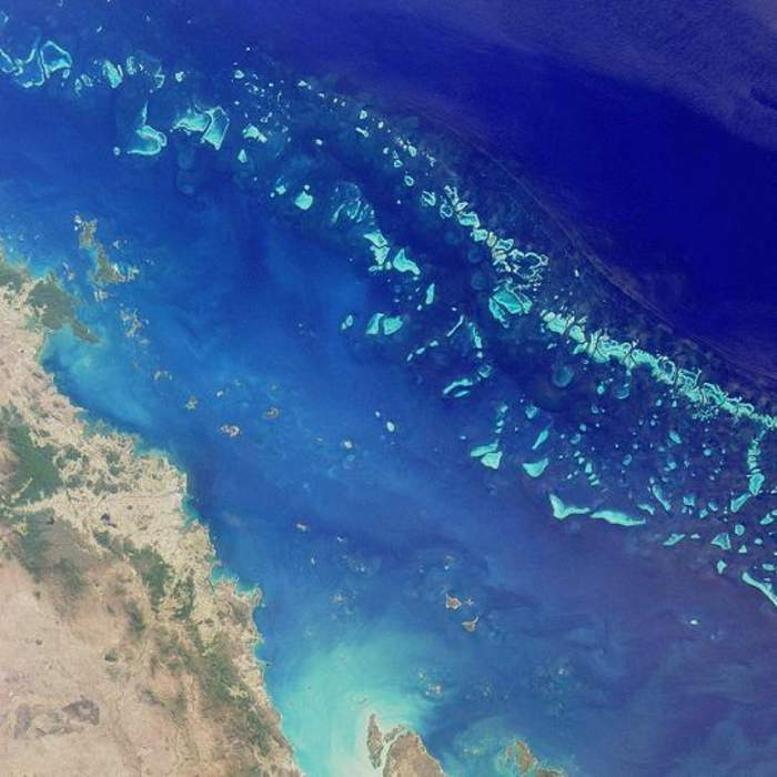 UNESCO will pursue plans to classify the Great Barrier Reef as 'endangered' despite federal government objection