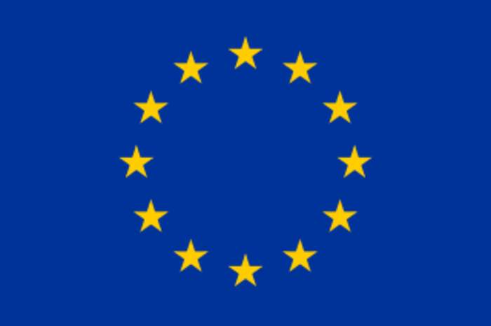 Member of the European Parliament