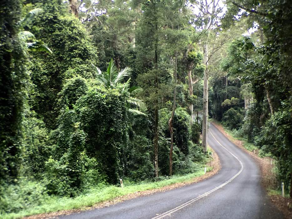 Father, son spend night lost on Mount Glorious after bushwalk