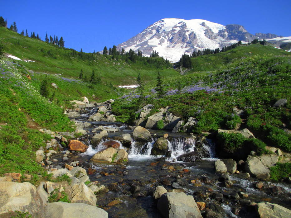 Mount Rainier National Park in Washington searching for three missing hikers