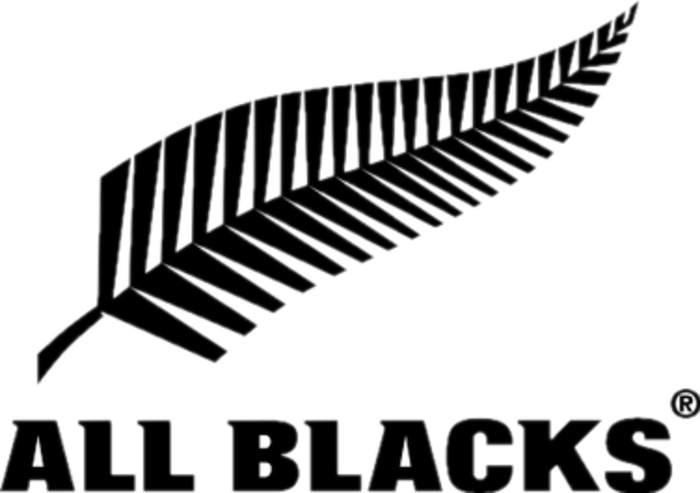 News24.com | All Blacks' home Tests against Argentina dropped in coronavirus revamp