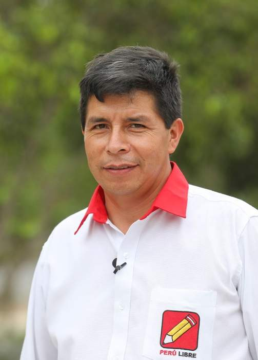 Socialist Pedro Castillo declared Peru's next president more than a month after run-off election