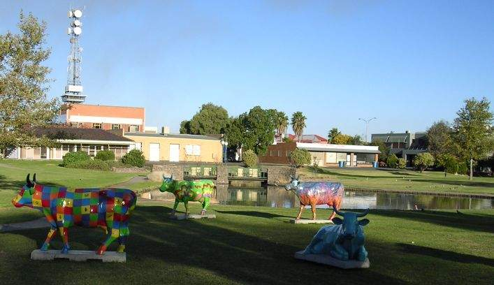 Long testing queues as coronavirus hits Victorian town of Shepparton