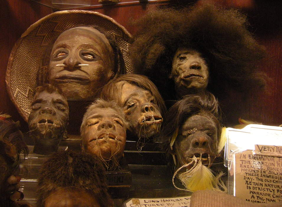Shrunken Head Displayed in Georgia Was Returned to Ecuador