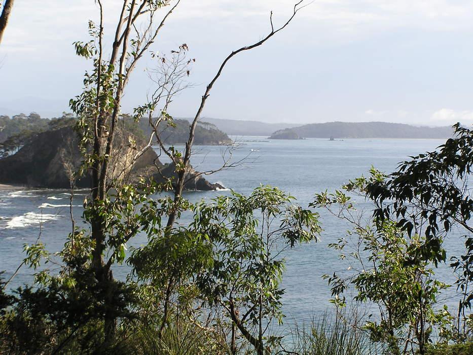 South Coast (New South Wales)