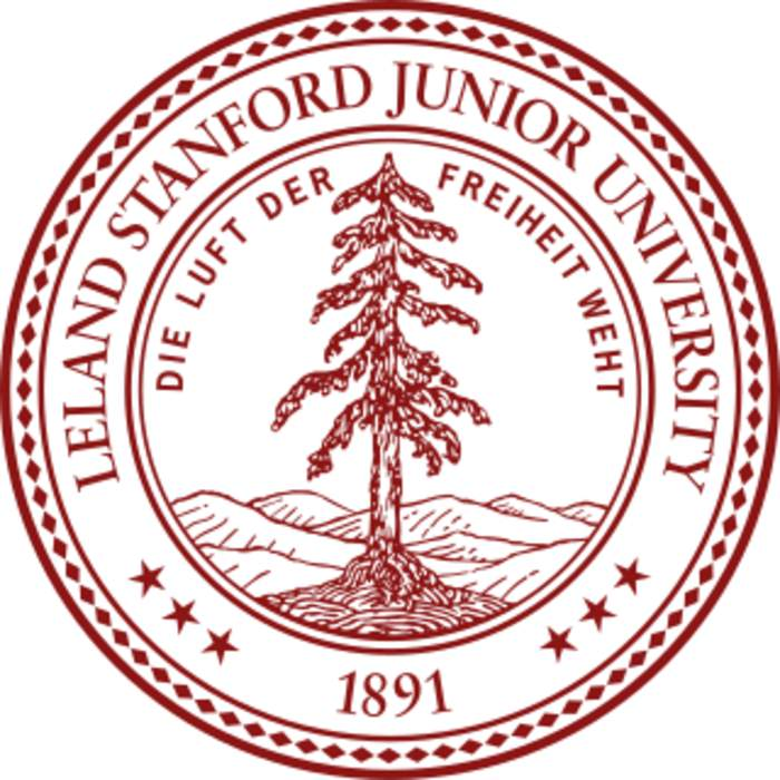 Stanford sexual assault victim