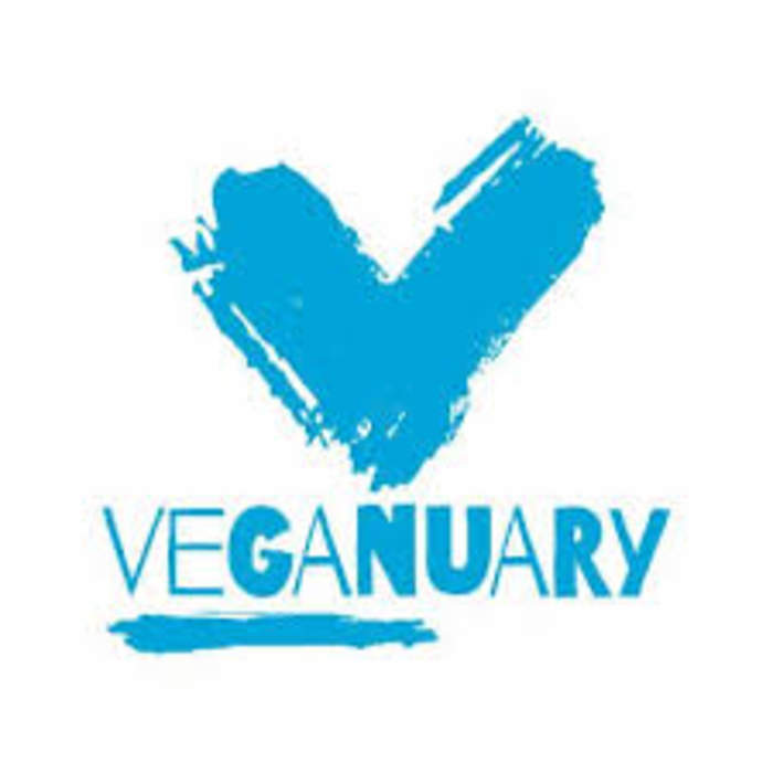 Veganuary, Red January and Dry January: How have people got on?