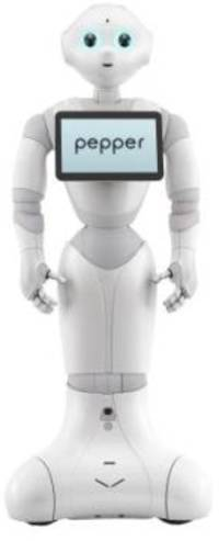 WALL-E-style emotional humanoid robot unveiled in Japan