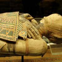 Researchers Mummify a Leg With Ancient Instructions