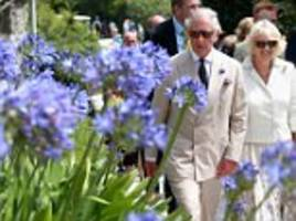 Half of us chat to our flowers, survey of horticulturalists finds