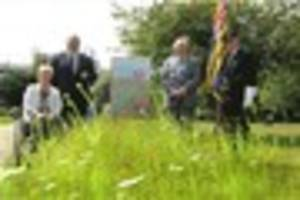 Wildflowers planted to commemorate First World War in full bloom...