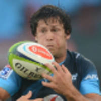 Midfield riches for Bulls