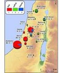 philistines introduced sycamore, cumin and opium poppy into israel