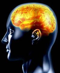 enhancing brain function may curb memory loss