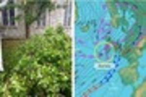 Trees brought down and Carmarthenshire homes without power due to...