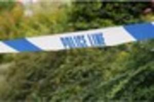 police appeal for help to find burglars who stole wedding...
