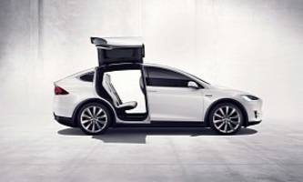 tesla seeks court ruling in row with german supplier over model x's falcon doors