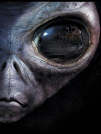 Are we the last intelligent beings left alive..?
