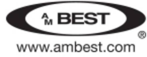 A.M. Best Downgrades Ratings of New Jersey Manufacturers Insurance Company