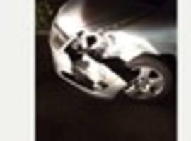 Cambridge News published Deer killed in crash with car on A10 in Cambridgeshire as driver...