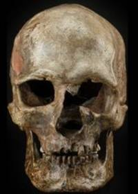 ice age: new evidence suggests hunter-gatherers were replaced during last ice age