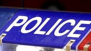 changes urged for police pursuit policy