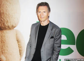 Who's That Girl? Liam Neeson's Fans Trying to Guess His 'Incredibly Famous' Girlfriend