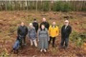 furious residents liken felling of trees at tilgate golf club to...