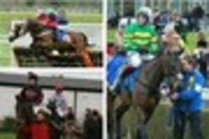 magic johnson canters to fine win at market rasen meeting