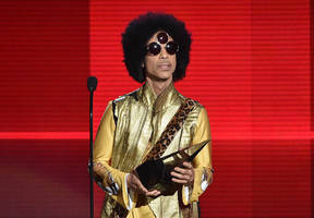Prince recovering after plane makes emergency landing