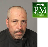 suspect hides in briar patch | patch pm