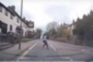 video: see the heart-stopping moment car nearly runs over puppy...