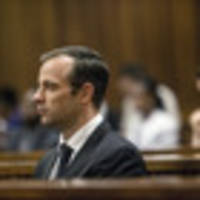 pistorius' family condemns claims he beat girlfriend with bat