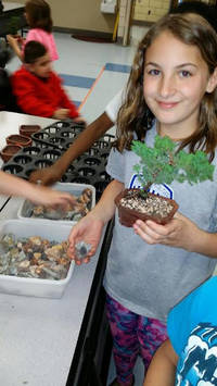 John F. Kennedy Students and Staff Receive Lesson From Bonsai Master