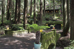 Tranquil Compound in the Calif. Redwoods (Must See Photos)